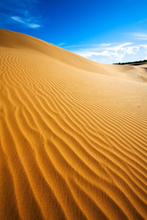 Desert Scene wallpaper