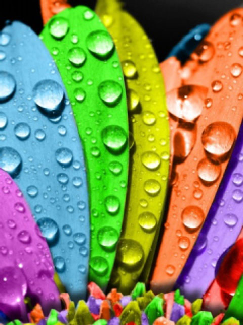 colorful-wallpapers-16