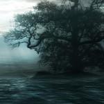 Water-Tree