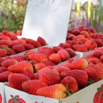 playbook_strawberries-wallpaper