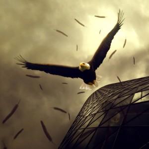 Eagles Buildings