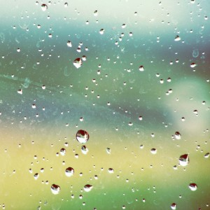 Rainy Window