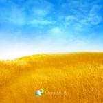 windows 8 bliss by rehsup wallpaper